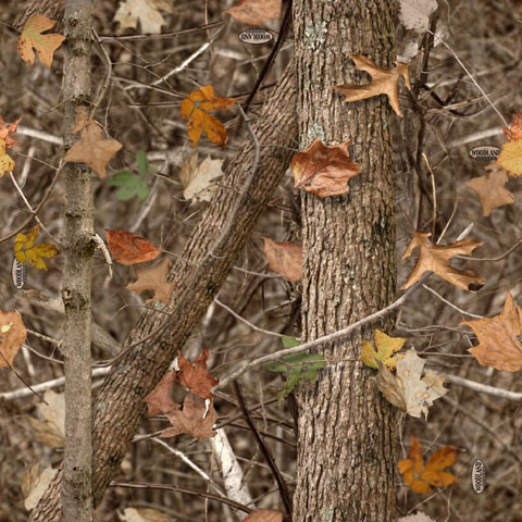 Woodland-shadow-pattern