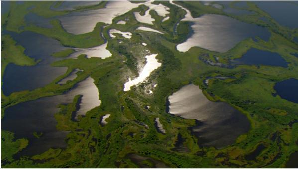 PantanalwetlandsBrazil